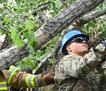 Pvt. Seth Horn, of the 188th Engineer Company, uses a chainsaw to remove branch limbs that are blocking rescue access to a simulated victim during Exercise Vigilant Guard at Golden Lake, N.D.